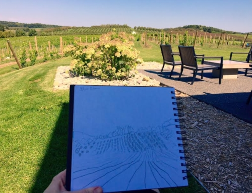 Project 24: Blustone Vineyards