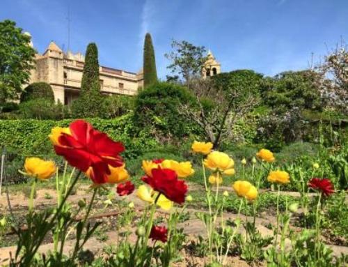 Adventures in Spain