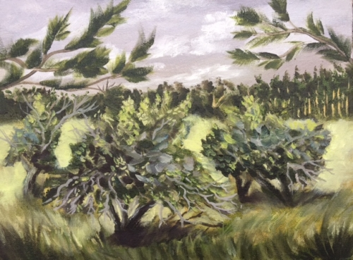 Ancient Apple Grove in Leelanau County - painting by Stephanie Schlatter