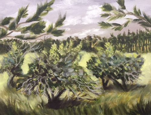 Ancient Apple Grove (SOLD)