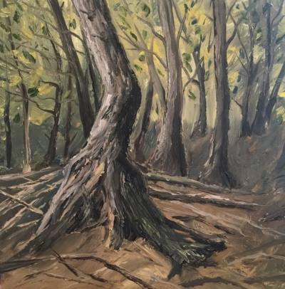 Cedars at DeYoung Natural Area - Painting by Stephanie Schlatter