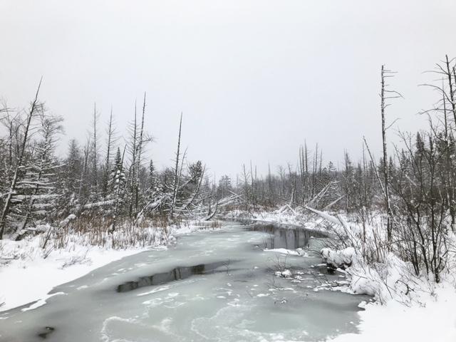 Winter in Leelanau