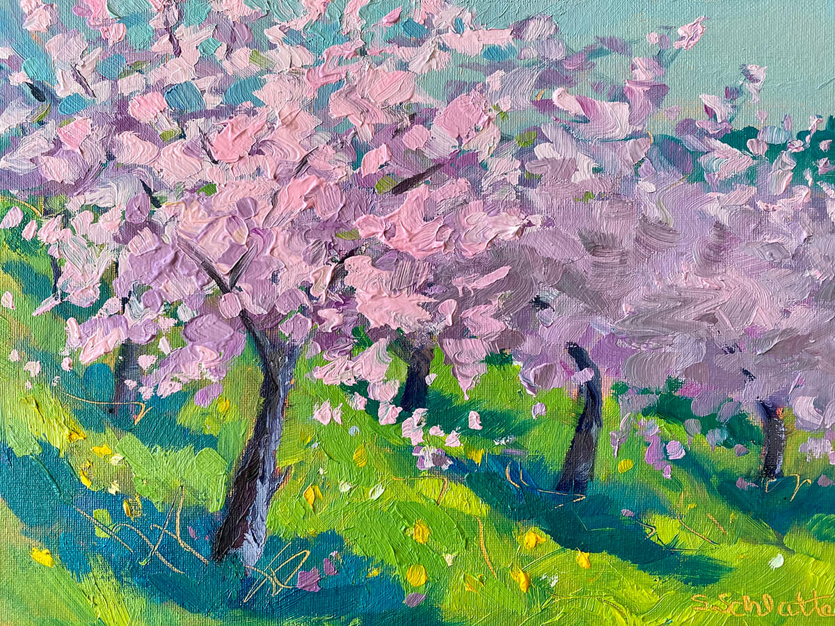 Cherry Blossoms painting by Stephanie Schlatter